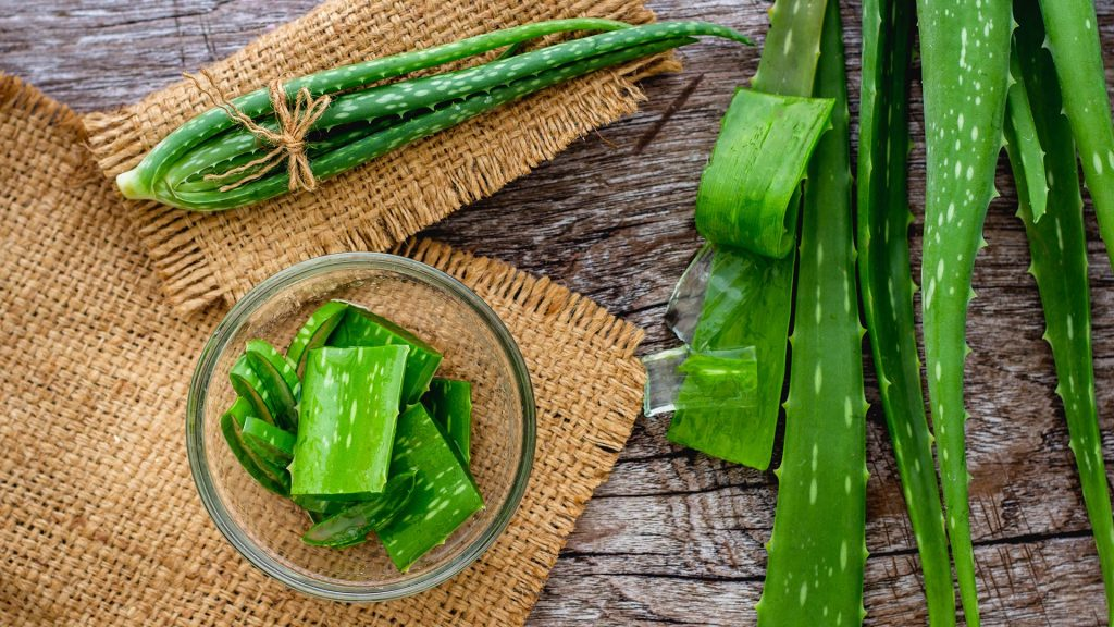 Aloe Vera includes vitamins, minerals, enzymes, sugar, amino acids