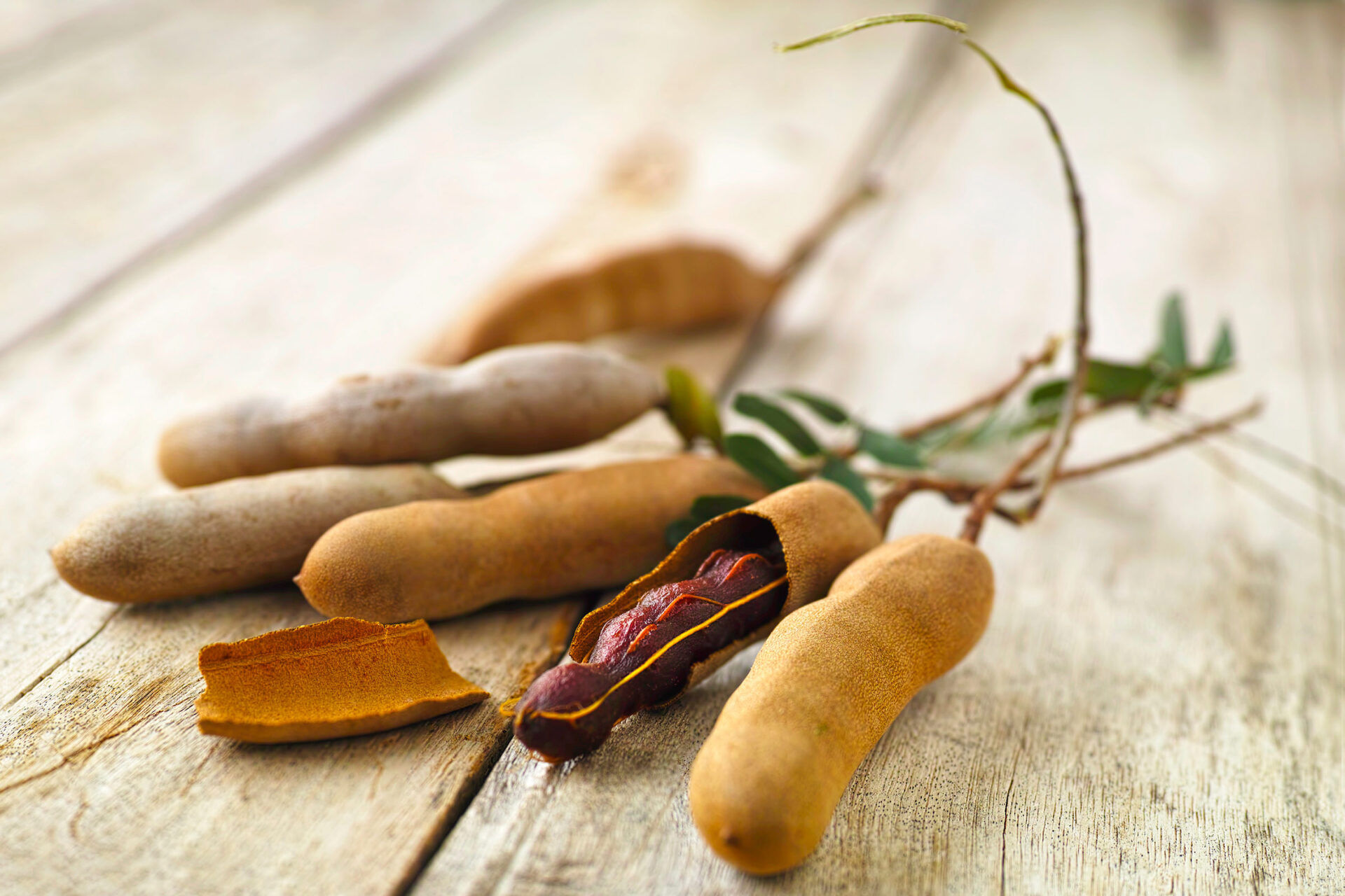 Tamarind fruit is native of Africa and grows in many tropical regions